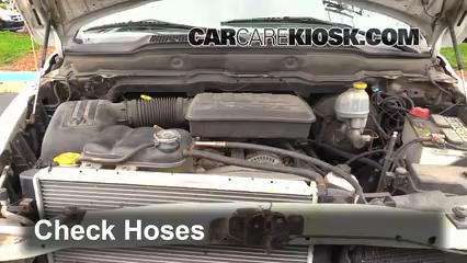 2002 Dodge Ram 1500 4.7L V8 Crew Cab Pickup (4 Door) Durites