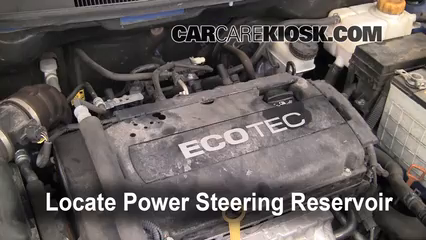 2009 Chevrolet Aveo LS 1.6L 4 Cyl. Power Steering Fluid