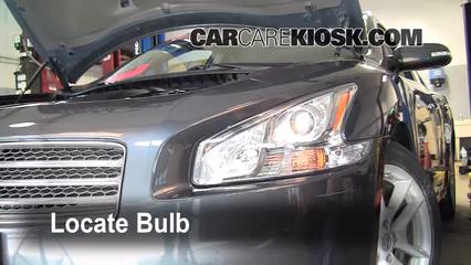 2009 Nissan Maxima S 3.5L V6 Luces Luz de estacionamiento (reemplazar foco)