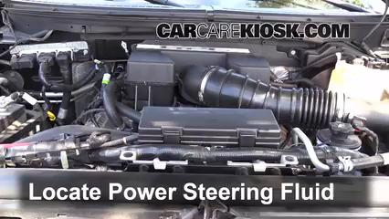 2010 Ford F-150 SVT Raptor 6.2L V8 Líquido de dirección asistida