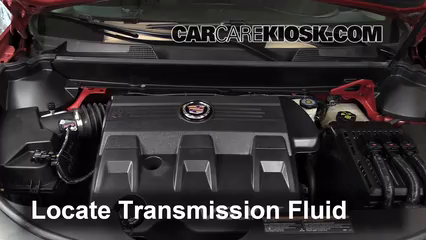 2011 Cadillac SRX 3.0L V6 Transmission Fluid Check Fluid Level