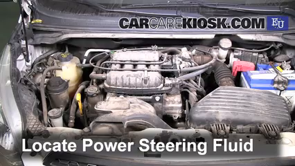 2011 Chevrolet Beat Campus 1.0L 4 Cyl. Power Steering Fluid