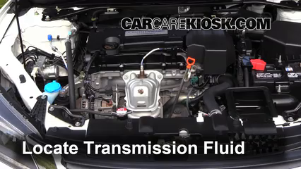 2013 honda accord cvt transmission fluid change
