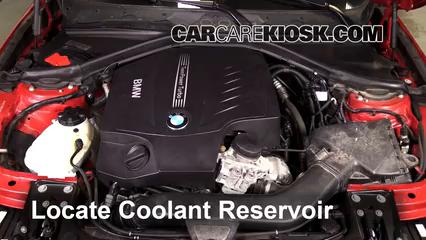 2013 BMW 335i xDrive 3.0L 6 Cyl. Turbo Sedan Coolant (Antifreeze)