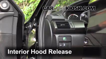 2014 Honda Accord EX-L 3.5L V6 Sedan Capot