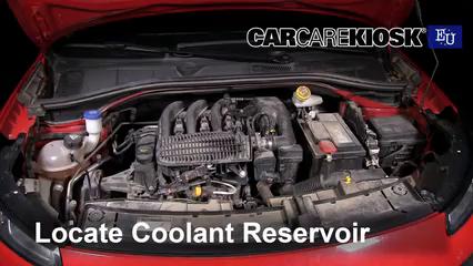 2015 Citroen C4 Cactus Feal 1.2L 3 Cyl. Turbo Coolant (Antifreeze)