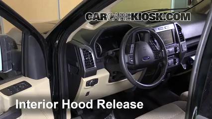 2015 Ford F-150 XLT 3.5L V6 Turbo Crew Cab Pickup Capot