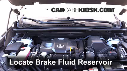 2015 Lexus NX200t 2.0L 4 Cyl. Turbo Brake Fluid