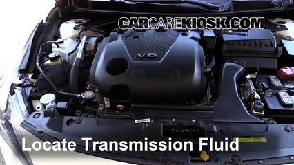 2016 Nissan Maxima SR 3.5L V6 Transmission Fluid Fix Leaks