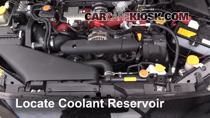 locate the coolant reservoir and clean it