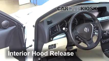 2016 Acura ILX 2.4L 4 Cyl. Capot