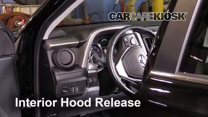 2016 Toyota RAV4 Limited 2.5L 4 Cyl. Capó