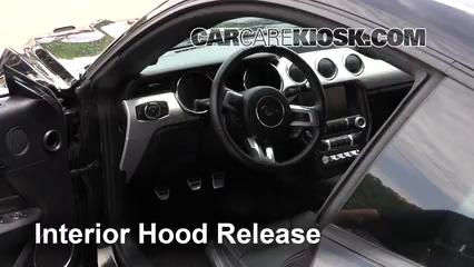 2017 Ford Mustang GT 5.0L V8 Capot