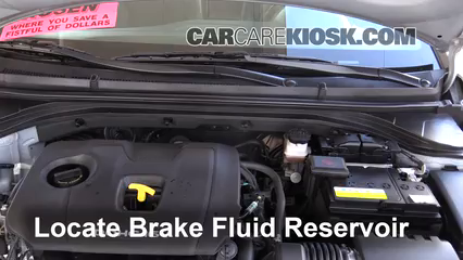 2017 Hyundai Elantra Limited 2.0L 4 Cyl. Brake Fluid