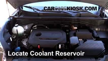 2017 Kia Sportage LX 2.4L 4 Cyl. Coolant (Antifreeze)