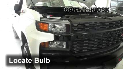 2019 Chevrolet Silverado 1500 Custom Trail Boss 4.3L V6 Crew Cab Pickup Luces Luz de giro delantera (reemplazar foco)