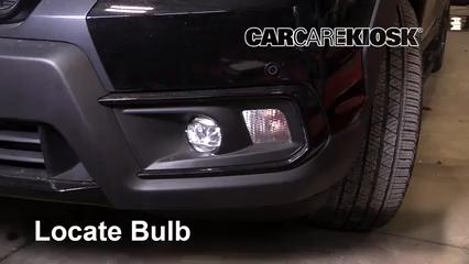 2019 Honda Passport Elite 3.5L V6 Lights Turn Signal - Front (replace bulb)