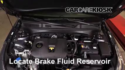 2019 Kia Forte LX 2.0L 4 Cyl. Brake Fluid